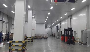 Fruit & Vegetable Storage Warehousing
